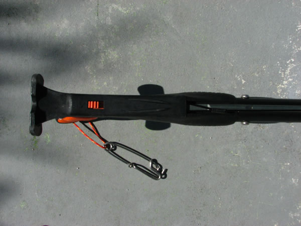 Rabitech apex key west spearfishing reports pictures - Apex dive gear ...
