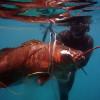 cubera-snapper-spearfishing