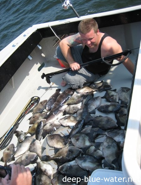 New jersey spearfishing key west spearfishing reports for Blue fishing nj