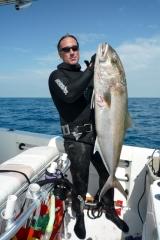amberjack-spearfishing