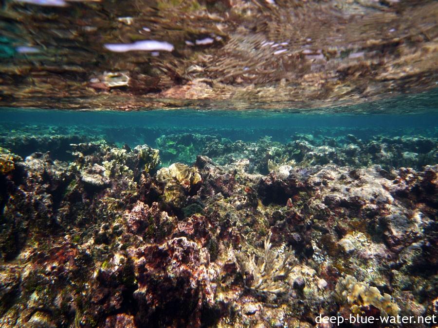 Bahamas – Great Guana Cay