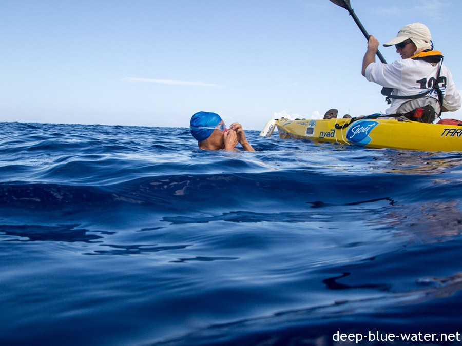 A Shark Diver Story : Cuba Swim with Diana Nyad