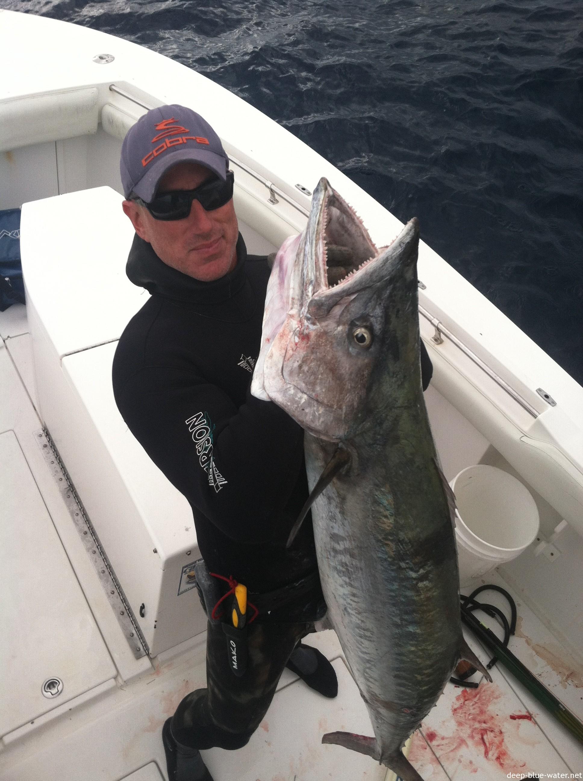 74# King Mackerel