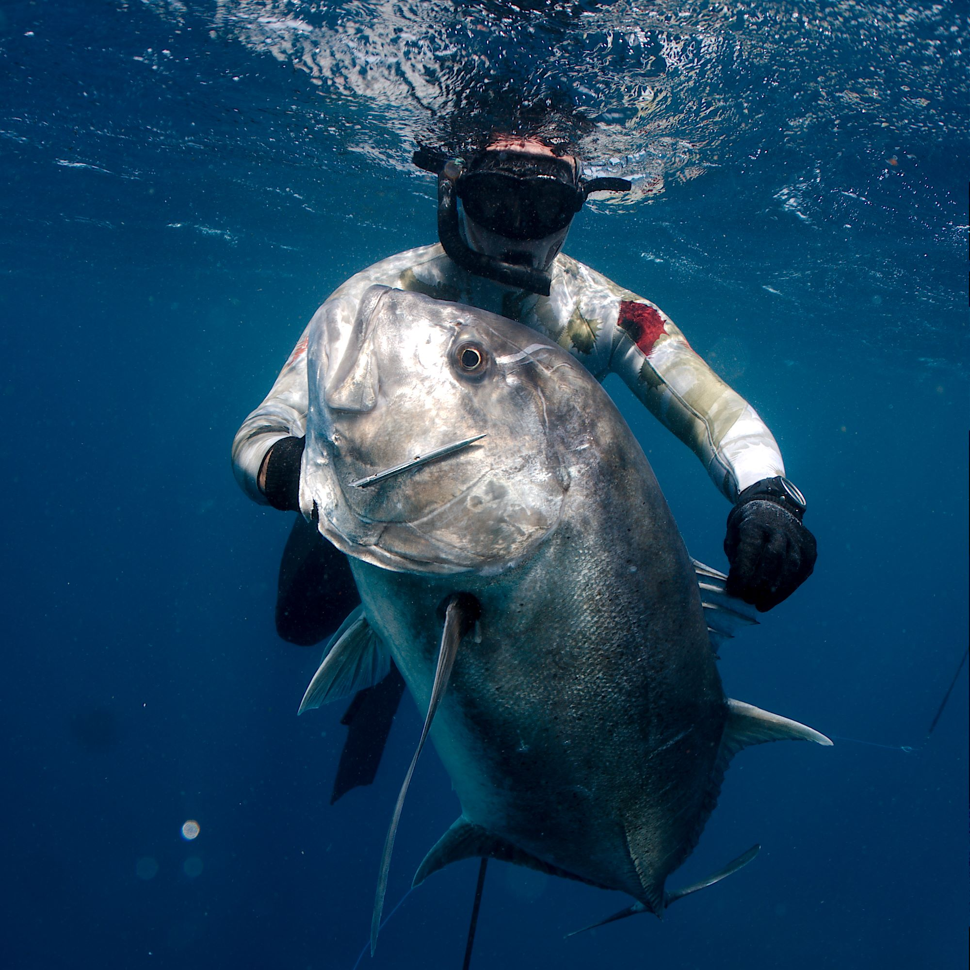 Bali Indonesia Spearfishing